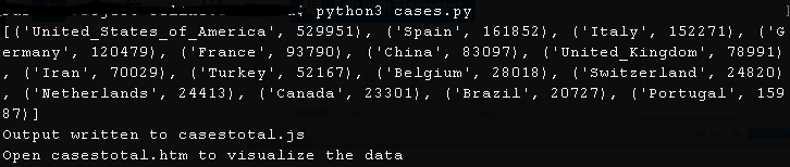 Covid-19 terminal output